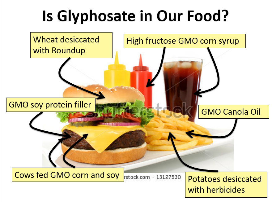 "gmos in our food After all, very little of our food is truly ""natural"" and even the most basic  they  refer to genetically modified organisms (gmos) – genes being."